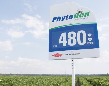 PHY 480 W3FE variety sign...jpg