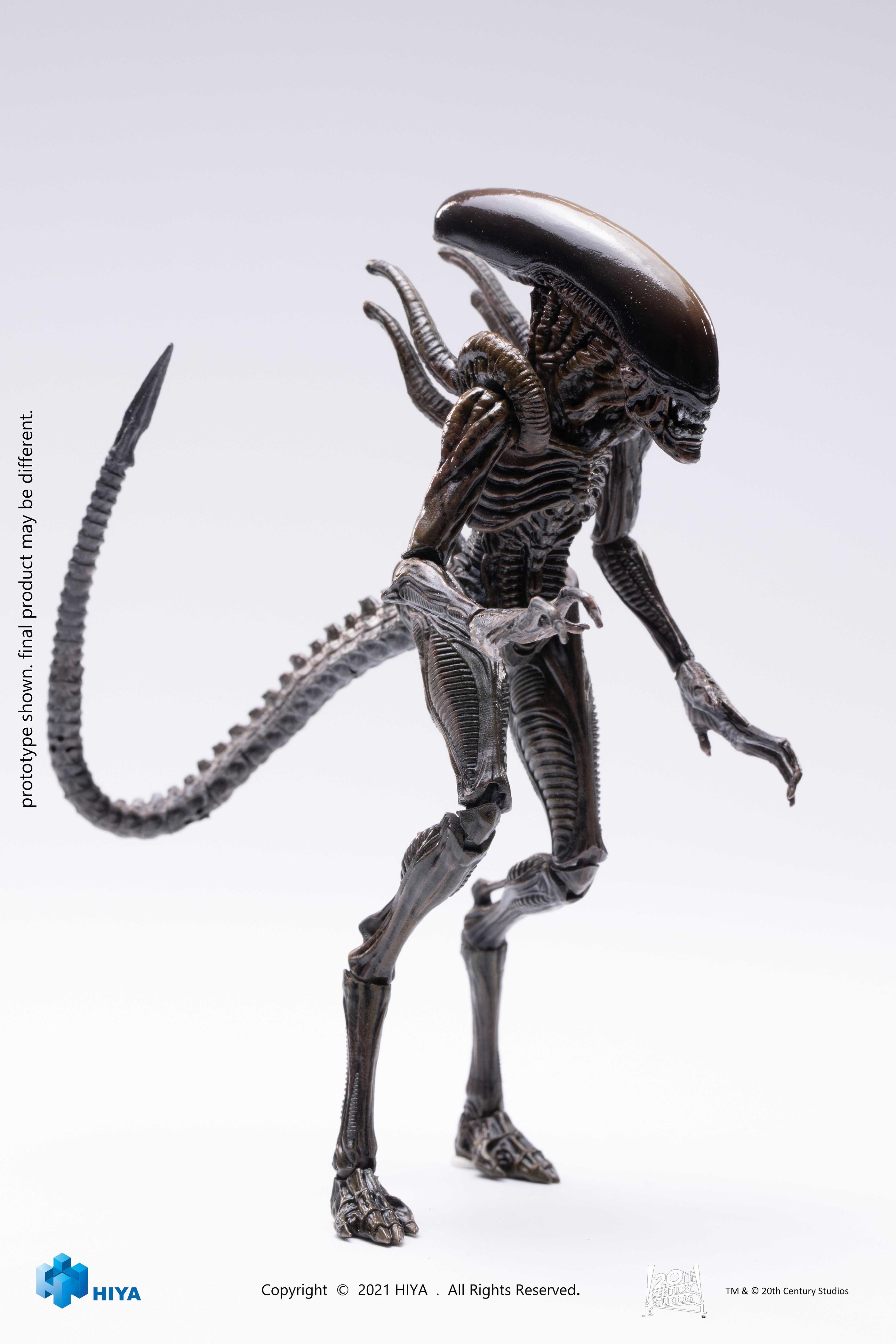 03-Alien-warrior.jpg