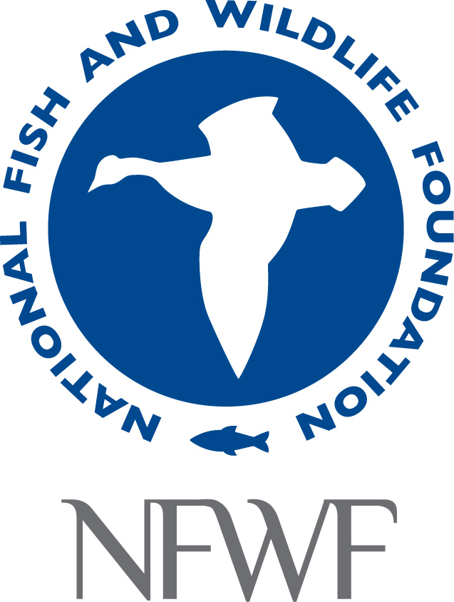 Bass pro shops news releases fishing buddies for National fish and wildlife foundation