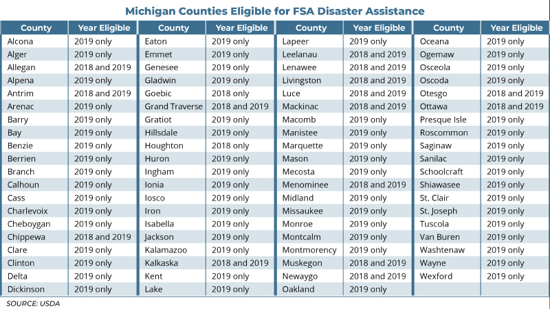 MichiganCountiesFSA_chart_527.jpg