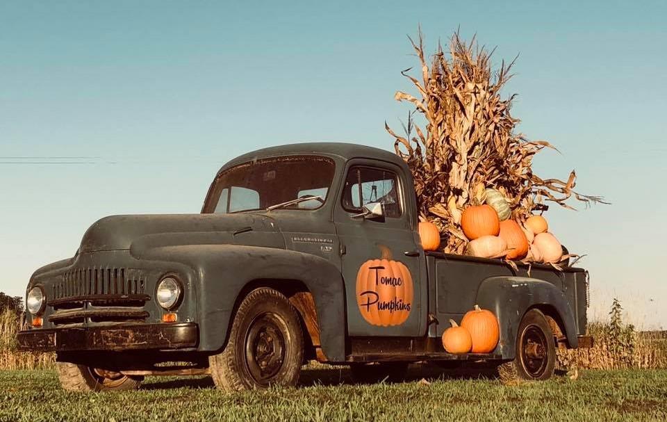 Tomac Pumpkins Truck.jpg