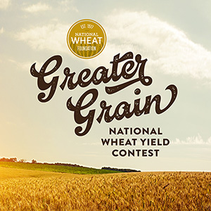 GREATER_GRAIN_SCRIPT_300x300.jpg