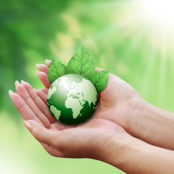 Eco-Friendly labels are valued by customers